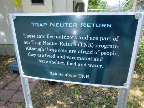 Tnr sign