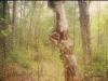 karin-lauria-14