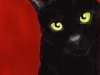 lauria-black-cat